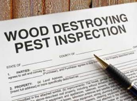 Who pays for a termite inspection on a VA loan in Florida
